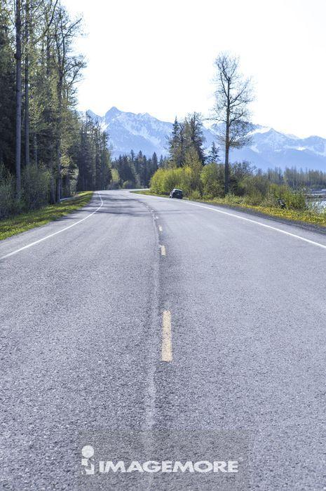 美国,阿拉斯加,北美洲,道路,