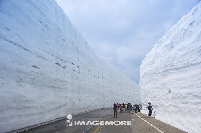 日本,雪墙,黑部,立山,
