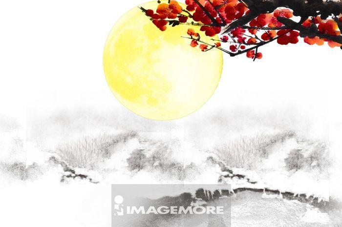 ,新年,春节,花好月圆,