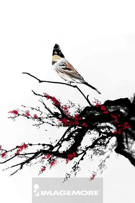 植物,树枝,一只动物,动物,自然,动物主题,动物图案,可爱,美丽,美丽的