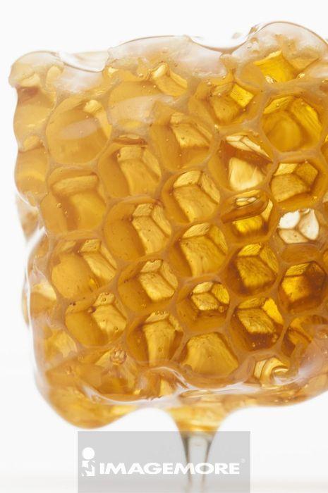 蜂巢,蜂蜜,