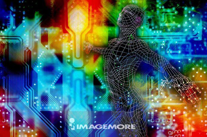 人体模型,电脑绘图,
