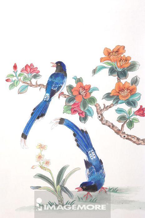国画,花鸟画,山茶花,台湾蓝鹊,