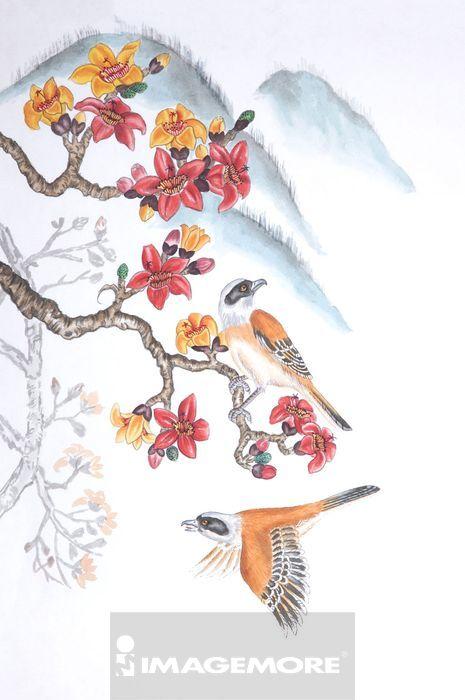 鸟,二只动物,动物,整只,动物学,动物主题,动物图案,野生动物,可爱,飞