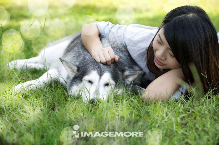 女性,西伯利亚哈士奇,狗,