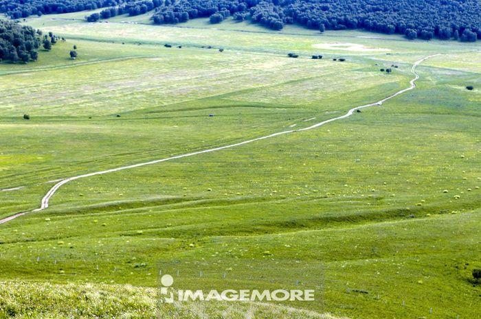 内蒙古,乌兰布统草原,