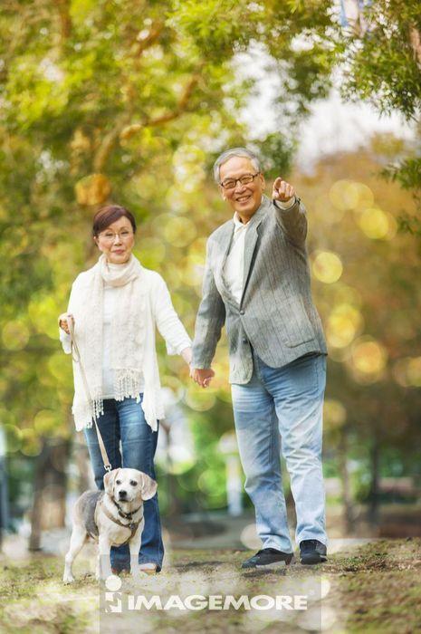 老年夫妻,米格鲁,公园,