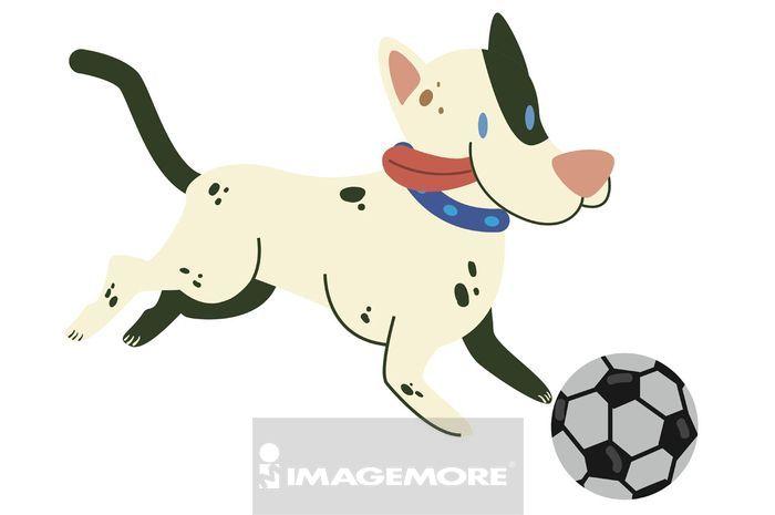 斗牛梗,玩,球,足球,拟人化,拟人化人脸,开心,愉快,快乐,笑脸,微笑