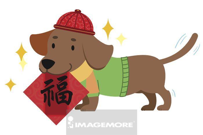 新年,狗年,腊肠犬,