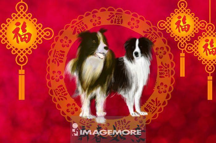 狗年,新年,春节,牧羊犬,