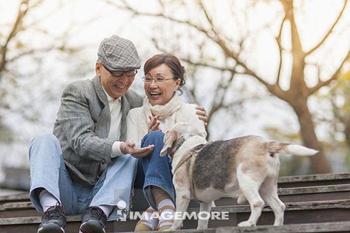 老年夫妻,米格鲁,