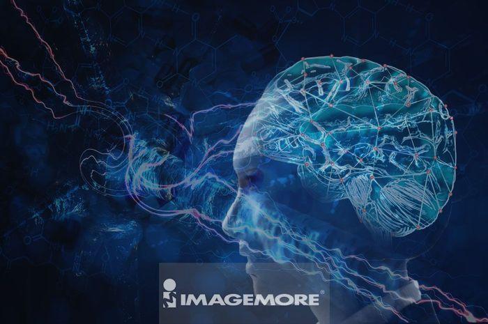 网络大脑 人工智能 呈现人脑的插图