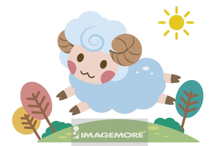 绵羊,动物,