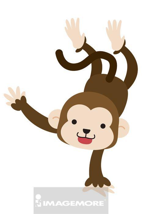 插画 - 可爱猴子