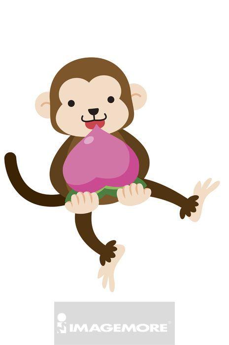 猴子,插画,