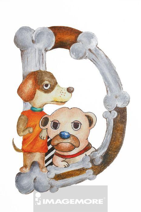 狗,英文字母C,