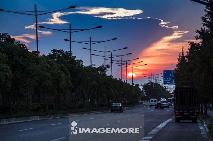 路灯,汽车,汽车广告背景图,交通,交通工具,运输,车道,道路,路树,柏油