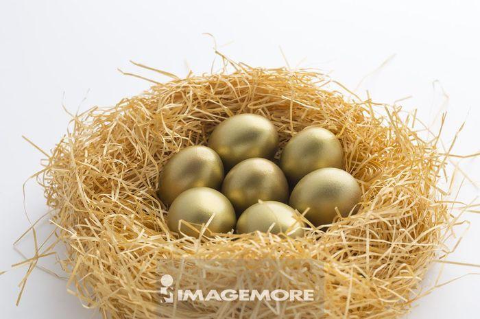 鸟巢里的金蛋