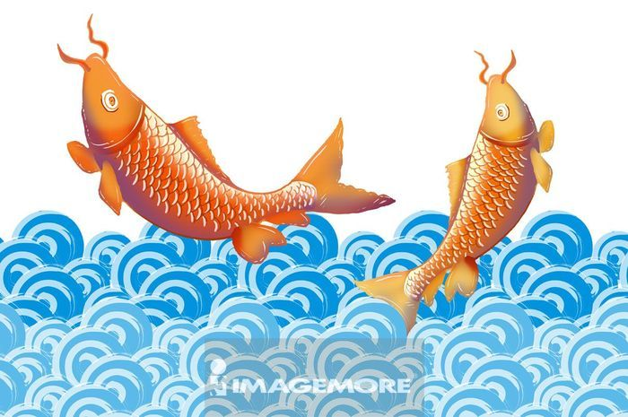 两只鱼跳出水面