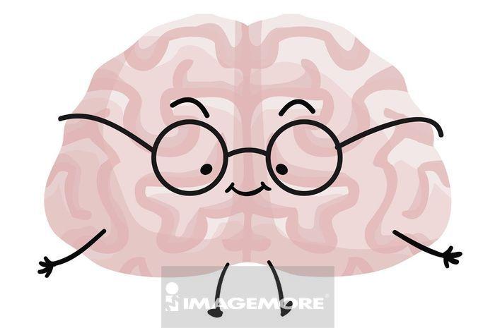 聪明的大脑