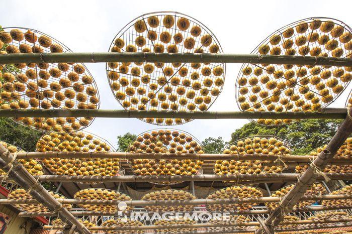 柿子,柿饼,新竹,台湾,亚洲,