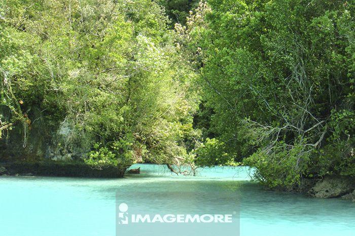 帛琉,帕劳牛奶湖,