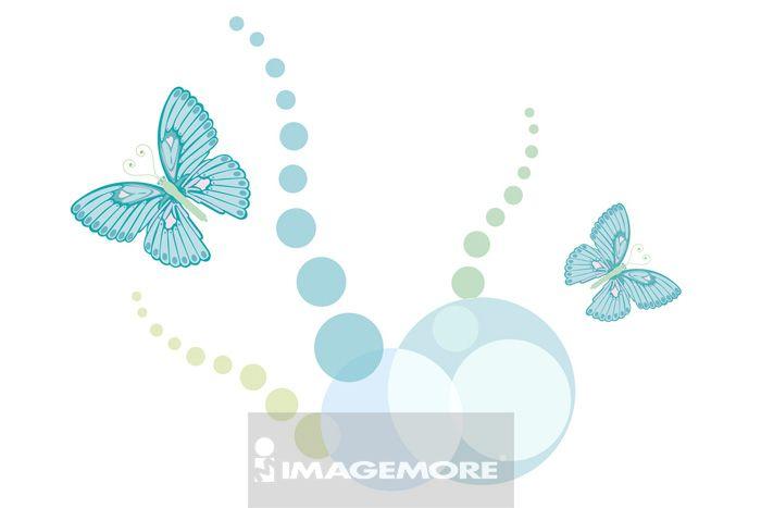 插画,插画和绘画,向量,计算机绘图,无人,彩图,图案,花纹,边框,蝴蝶