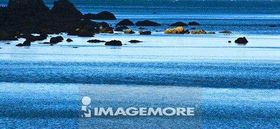 纽西兰,杰克森湾