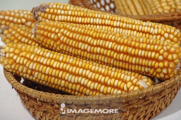 食物,玉米