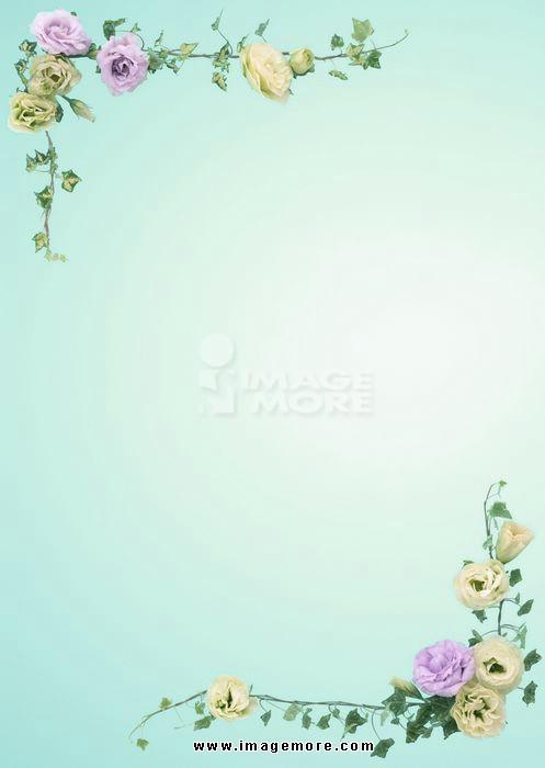 00046651,影像,彩图,直图,线,框,设计,花纹