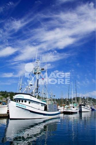 Commercial fishing boats at a harbor, Newport, Oregon, USA
