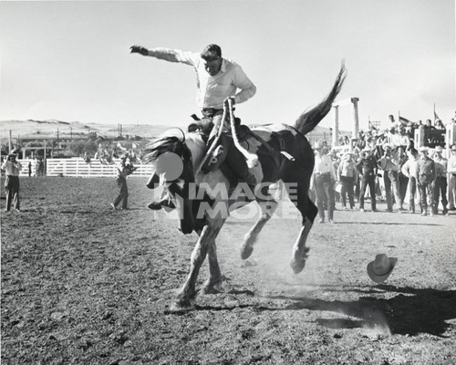 Cowboy riding a bucking horse in a rodeo
