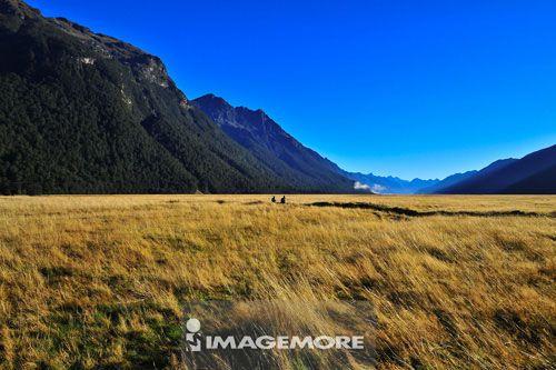 冰河地公园,新西兰南岛,大洋洲